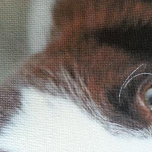 Canvas_closeup