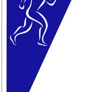 SSO_flag